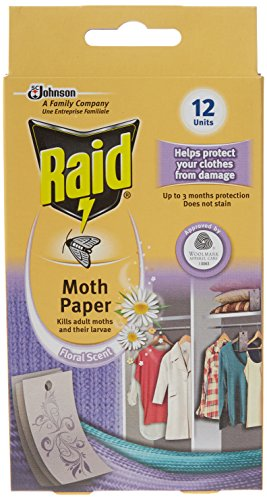 Raid Active Paper (Pack of 6)