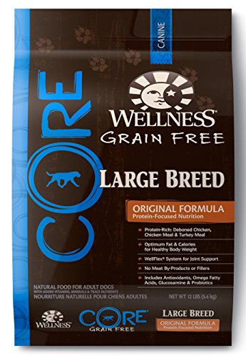 Wellness CORE Grain Free Large Breed Chicken & Turkey Natural Dry Dog Food, 12-Pound Bag