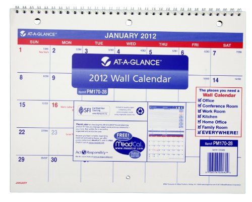 AT-A-GLANCE Recycled Desk/Wall Calendar, Med Wall, 2013 (PM170-28)