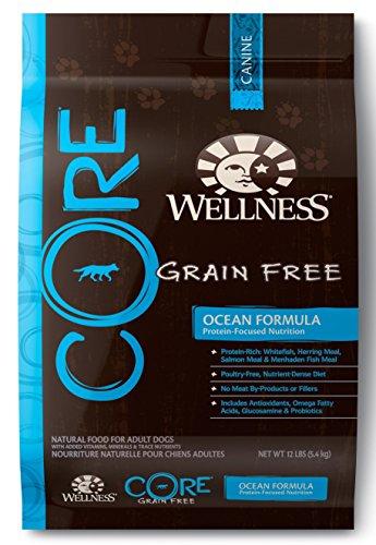 Wellness CORE Grain Free Ocean Whitefish, Herring & Salmon Natural Dry Dog Food, 12-Pound Bag
