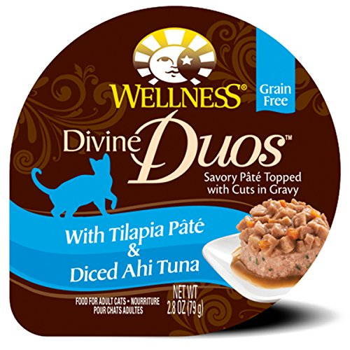 Wellness Divine Duos Grain Free Tilapia & Ahi Tuna Natural Wet Cat Food, 2.8-Ounce Cup