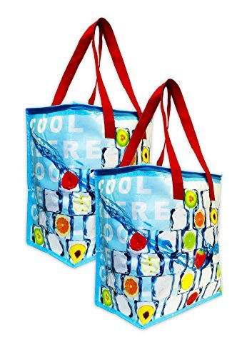 Earthwise Large Insulated Reusable Shopping Bag (2 Pack)