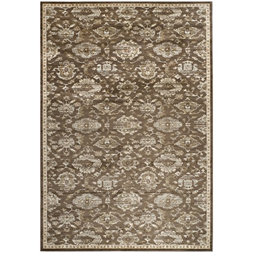 Safavieh Florenteen Collection FLR128-2512 Brown and Ivory Area Rug, 9 feet by 12 feet (9' x 12')